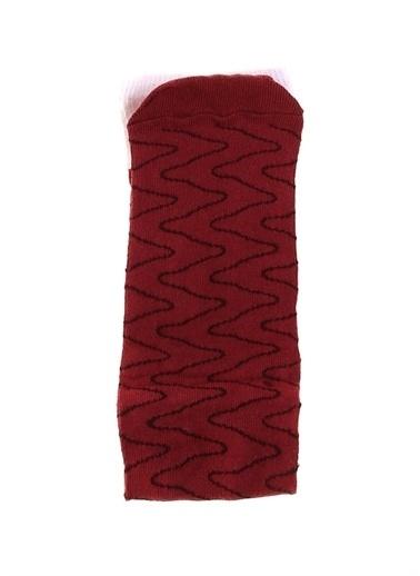 Socks+Stuff Socks&Stuff 20-213303 Çok Renkli Erkek Çorap Renkli
